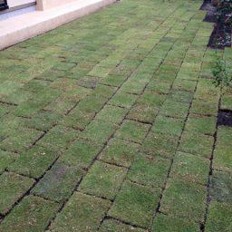 お庭作り①(芝張り)