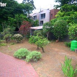 庭木の管理