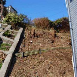 アパートの草刈と雑草対策